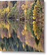 Forest Reflected In A Loch Metal Print