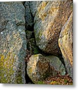 Forest Rocks Metal Print