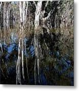 Forest Spin Metal Print