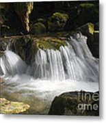 Forest Stream 2a Metal Print