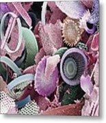 Fossilised Diatoms, Sem Metal Print