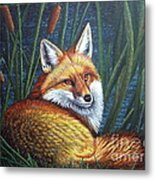 Fox In Cat Tails Metal Print by Terri Maddin-Miller