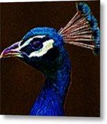 Fractalius Peacock Metal Print