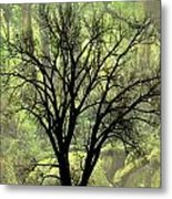 Freaky Tree 2 Metal Print