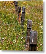Fredricks Meadow Metal Print