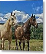 Freedom Riders Metal Print