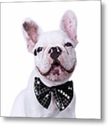 French Bulldog And Bow Tie Metal Print by Maika 777