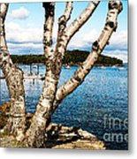Frenchman Bay Metal Print