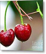 Fresh Wet Cherries Metal Print