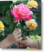 Friendship Rose Metal Print