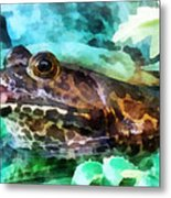Frog Ready To Be Kissed Metal Print