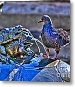 Frogs And A Pigeon Metal Print