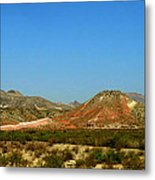 From A Distance Metal Print by Judy Hall-Folde