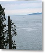 From The Bluff Metal Print