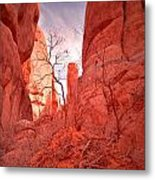 From The Inside Metal Print