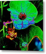 From The Psychedelic Garden Metal Print