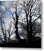 From This Earth Metal Print