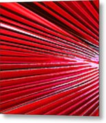 Frond Of Red Metal Print