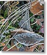 Frost Composition Metal Print