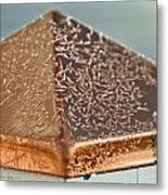 Frost On Copper Newel Metal Print