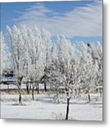 Frosted Metal Print