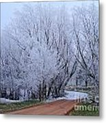 Frosted Path Metal Print