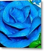 Frosting Rose Metal Print