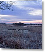 Frosty Cape May Meadow Metal Print