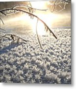 Frosty Ice At Sunrise Metal Print