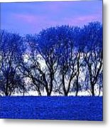 Frosty Trees Metal Print