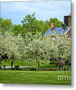 Frothy Foliage Metal Print
