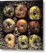 Frozen Apples Metal Print by Bernard Jaubert