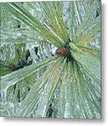 Frozen Assets Metal Print by Linda Pope