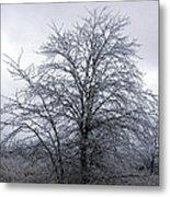 Frozen Landscape 4 Metal Print