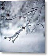 Frozen Path Metal Print