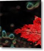 Frozen Red Leaf Metal Print