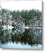 Frozen Reflection Metal Print