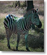 Fruit Stripes Metal Print