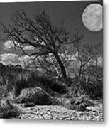 Full Moon Over Jekyll Metal Print by Debra and Dave Vanderlaan