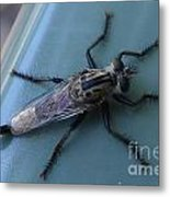 Funky Bug Metal Print