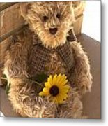Fuzzy Teddy Metal Print