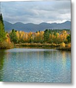 Gale River In Franconia New Hampshire Metal Print