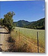 Galls Creek Road In Southern Oregon Metal Print