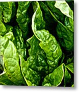 Garden Fresh Metal Print by Susan Herber