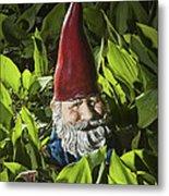 Garden Gnome No 0065 Metal Print