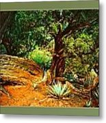 Garden Of The Lost Tribe Metal Print
