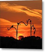 Garden Sunrise Metal Print