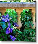 Garden Wall With Periwinkle Flowers Metal Print