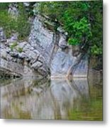 Gator Rock Metal Print