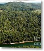 Gauley River Aerial View Metal Print
